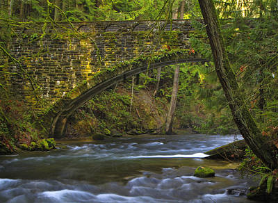 Photograph - Moss Bridge Whatcom Falls by Sonya Lang