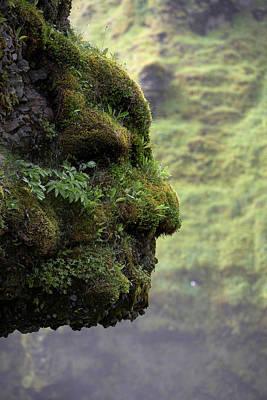 Moss Covered Rock Shaped Like A Face Art Print