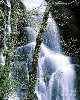 Photograph - Moss Glen Falls Spring by Alan L Graham