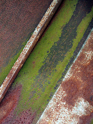 Moss Green-raw Steel Print by Tom Druin