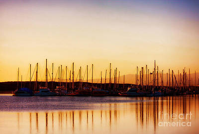 Photograph - Moss Landing Sunset by Polly Peacock