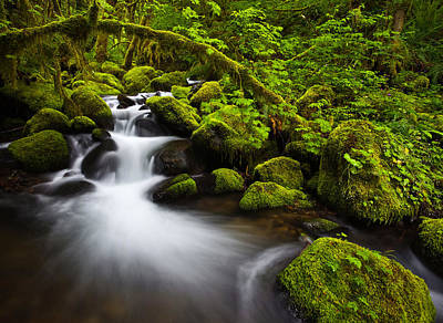 Northwest Landscapes Photograph - Mossy Arch Cascade by Darren  White