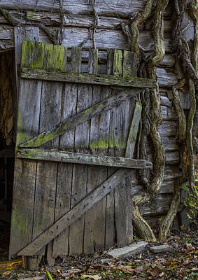 Photograph - Mossy Barn Door by Amber Kresge