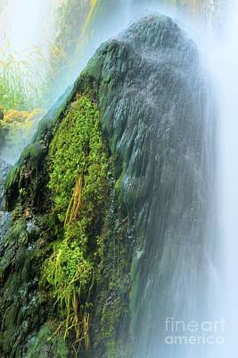 Photograph - Mossy Cascade by Adam Jewell