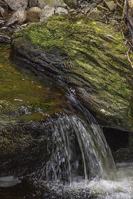 Photograph - Mossy Cascade by Julie Black