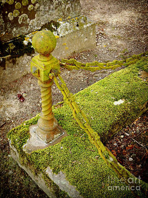 Photograph - Mossy Chain by Valerie Reeves