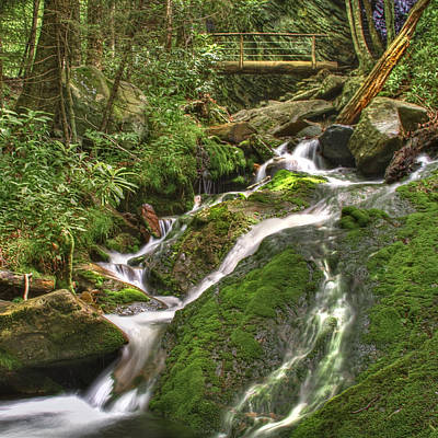 Photograph - Mossy Creek by Debra and Dave Vanderlaan