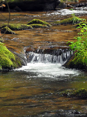 Photograph - Mossy Creek by Kay Lovingood