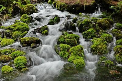 Photograph - Mossy Falls by Jeff Cook
