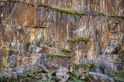 Photograph - Mossy Granite Canyon Wall by Connie Cooper-Edwards