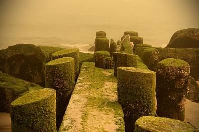 Bay Head Beach Photograph - Mossy Jetty - Jersey Shore by Angie Tirado