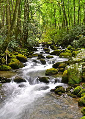 Mossy Mountain Stream Art Print by Frozen in Time Fine Art Photography