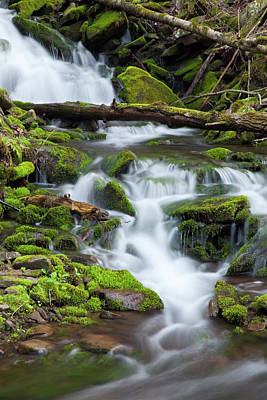 Photograph - Mossy Mountain Stream Spring Waterfall Cascade by John Stephens