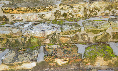 Photograph - Mossy Old Stone Steps by Michael Gooch