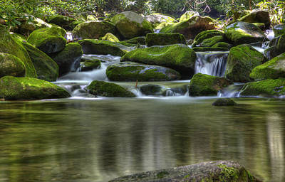 Photograph - Mossy Reflecting Pool by Coby Cooper