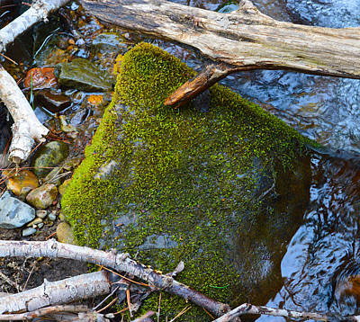 Photograph - Mossy Rock by Brent Dolliver
