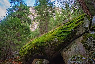 Yosemite National Park Photograph - Mossy Rocks Along Vernal Falls Trail by Lynn Bauer