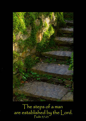 Chartreuse Photograph - Mossy Steps With Text by Carla Parris