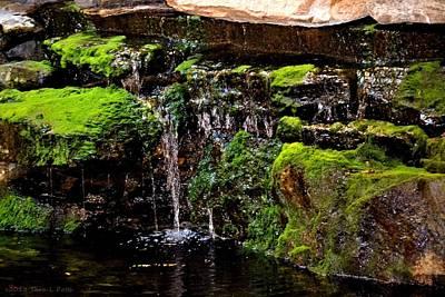 Mossy Waterfall Art Print by Tara Potts