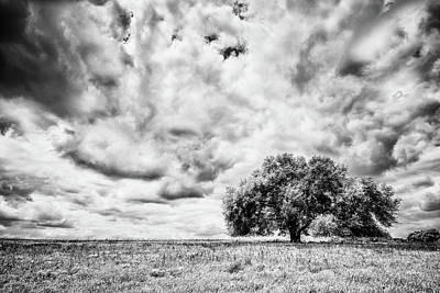 Photograph - Mostly Cloudy by Partly Cloudy
