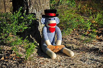 Sock Monkey Photograph - Monkey And Moth by Al Powell Photography USA