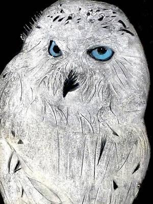Pastel - Snow Owl by Tyler Schmeling