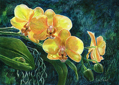 Drawing - Moth Orchids by Sandra LaFaut