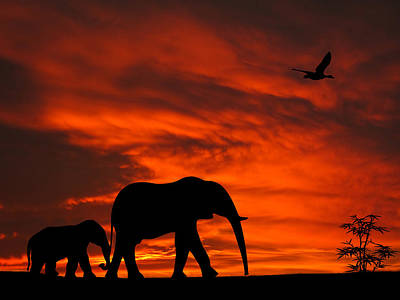 Mother And Baby Elephants Sunset Silhouette Series Art Print