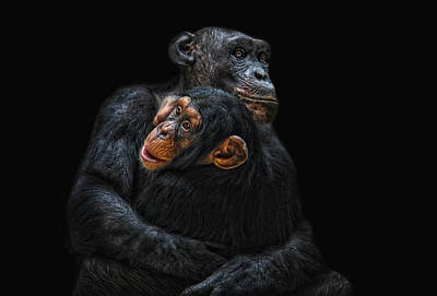 Mother And Child Art Print by Joachim G Pinkawa