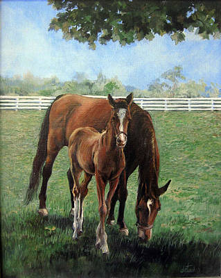 Painting - Mother And Colt by Donna Tucker