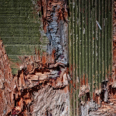 Photograph - Mother Earth Colors Abstract Square by Lee Craig