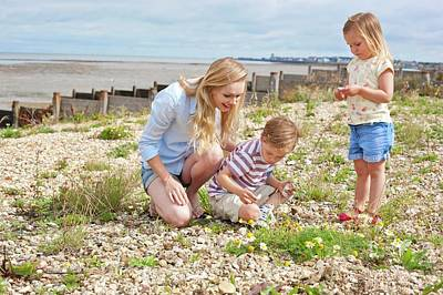 Mother With Children On Beach Art Print by Ian Hooton