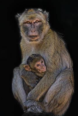 Caring Mother Photograph - Motherly Love by Joachim G Pinkawa