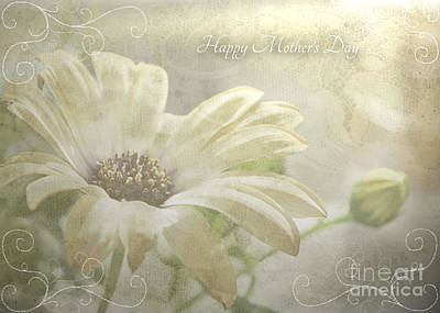 Photograph - Mother's Day Card With Pale Daisy by Debbie Portwood