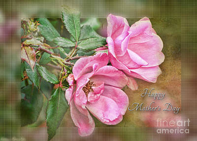 Photograph - Mother's Day Card With Two Pink Roses by Debbie Portwood