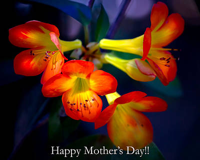 Photograph - Mother's Day Flowers by Mark Andrew Thomas