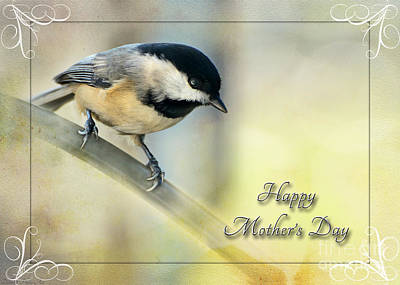 Photograph - Mother's Day Greeting Card Chickadee II by Debbie Portwood
