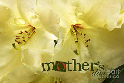 Art Print featuring the photograph Mothers Day by Jean OKeeffe Macro Abundance Art