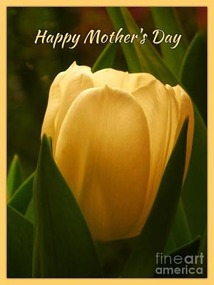 Photograph - Mother's Day Greeting Yellow Tulip by Joan-Violet Stretch