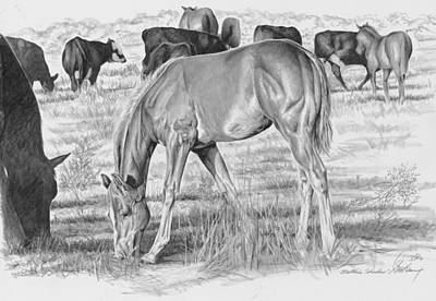 Equestrian Drawing - Mother's Shadow by Don Dane