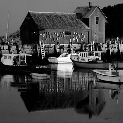 Photograph - Motif Number 1 - Black And White by Jacqueline M Lewis