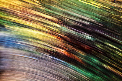Photograph - Motion In Nature by Steve Belovarich