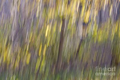 Photograph - Motion Series - 26 by Paul W Faust -  Impressions of Light