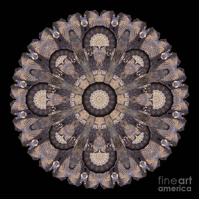 Wall Art - Photograph - Mottled Ice Mandala by Karen Jordan Allen