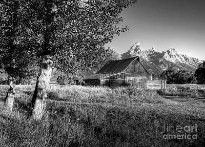 Photograph - Moulton's Barn 3 Bw by Mel Steinhauer