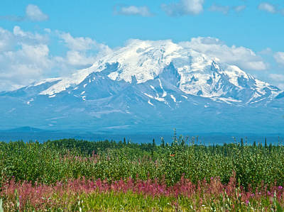 Elias Digital Art - Mount Drum In Wrangell-saint Elias Np From Glen Highway-ak by Ruth Hager