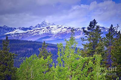 Photograph - Mount Edith Cavell by Tara Turner