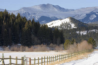 Steven Krull Royalty-Free and Rights-Managed Images - Mount Evans Ranch by Steven Krull