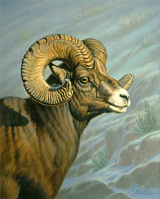 Mount Everts Ram Art Print by Paul Krapf