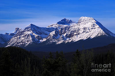 Photograph - Mount Fryatt And Mount Geraldine by Terry Elniski
